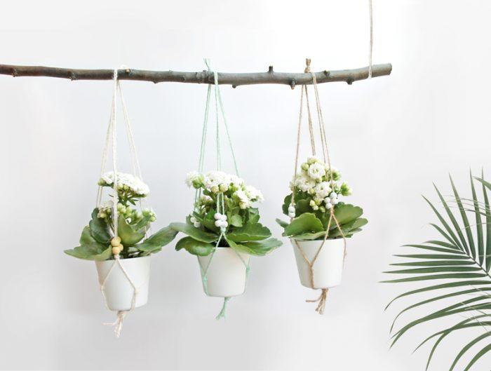 Mini Blumenampeln